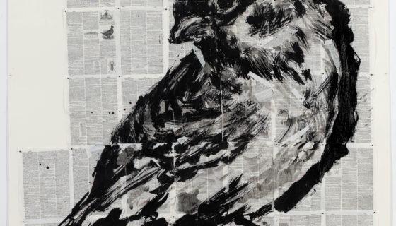 WK_16_147_Drawing_sparrow copy